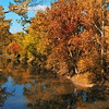 Autumn Trees on The Auglaize