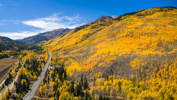 Aspen Autumn Heaven