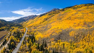 Aspen Autumn Heaven