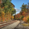 HDR photograph of old B&O rail line through autumn trees.