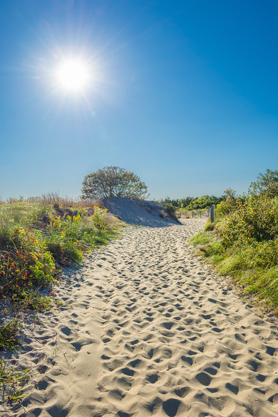 Sunlight Path on Beach