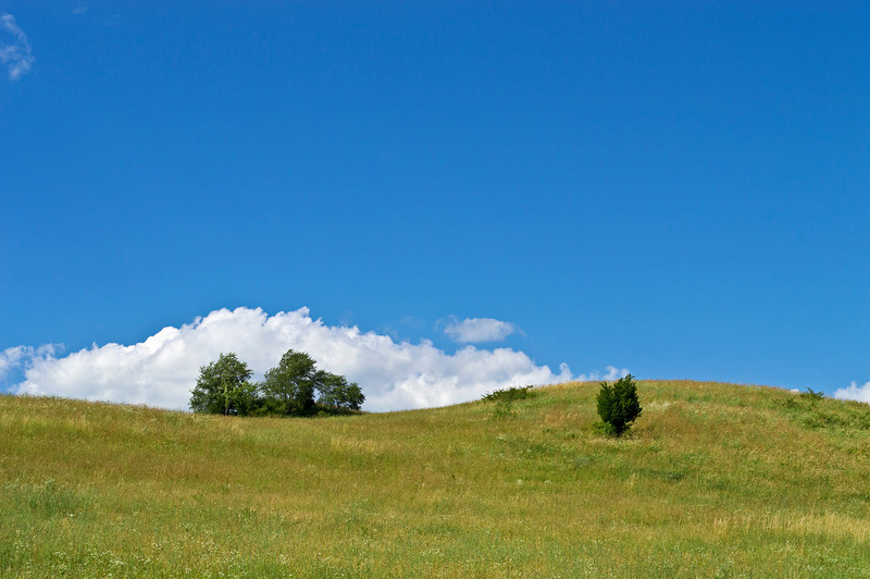 """Blue Sky Hillside""<br /> <br /> A green hillside on a beautiful Summer day in Sussex County, New Jersey."