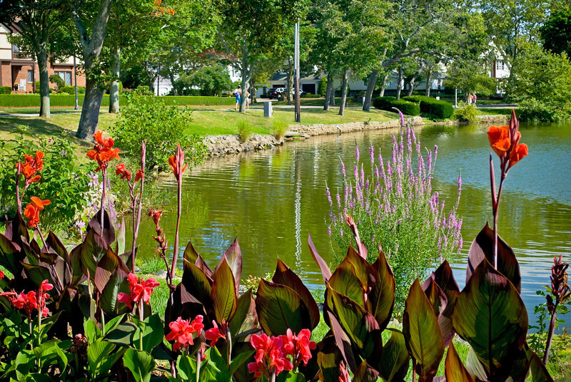 """Spring Lake Summer""<br /> <br /> A lakeside park in Spring Lake New Jersey with beautiful Summer flowers."