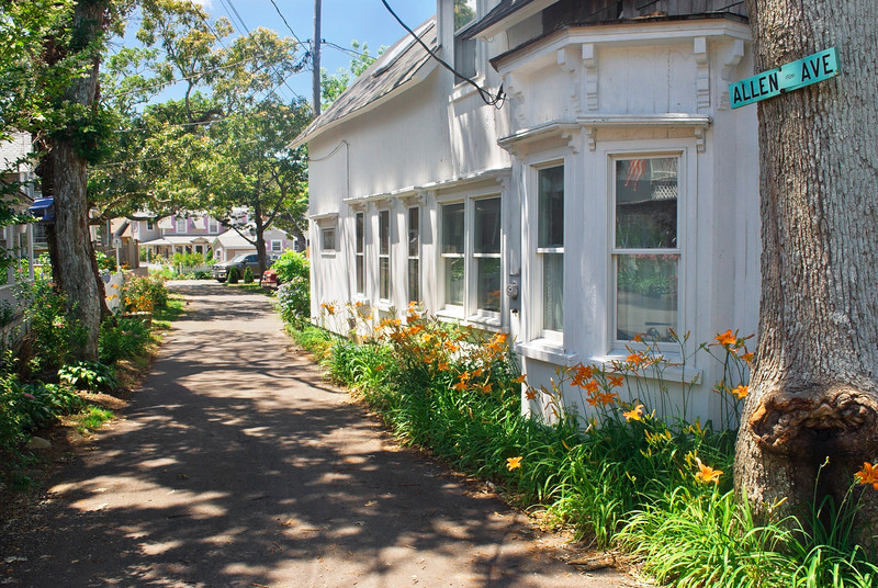 """Scenic Pathway""<br /> Scenic homes and Summer flowers  along this road in Martha's Vineyard, Cape Cod, Massachusetts."