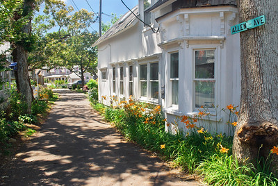"""""""Scenic Pathway"""" Scenic homes and Summer flowers  along this road in Martha's Vineyard, Cape Cod, Massachusetts."""