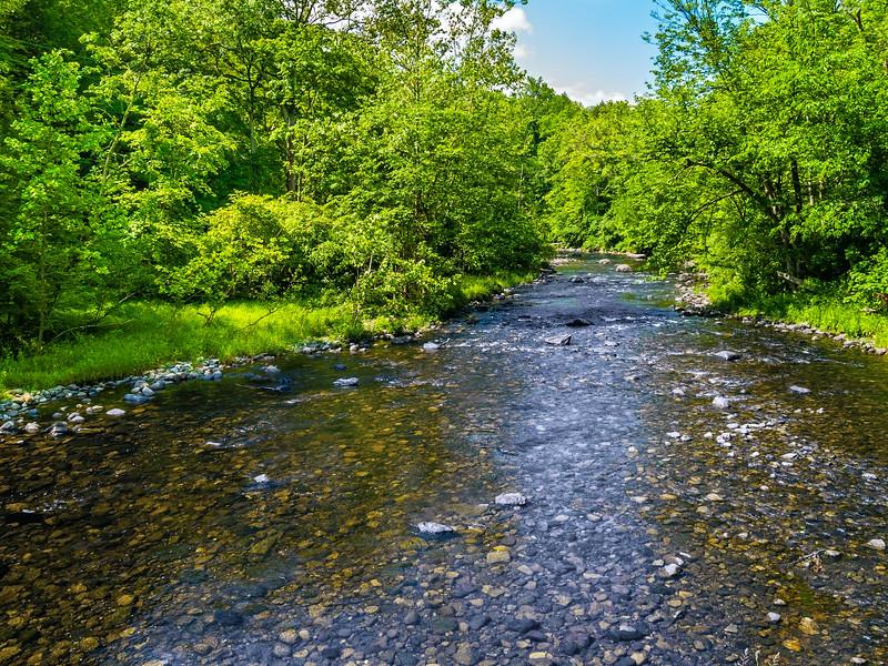 Vancampens Brook