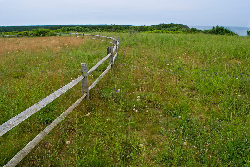 """Coastline Meadow""<br /> <br /> A Summer meadow and fence along the coast in Truro, Massachusetts on Cape Cod."