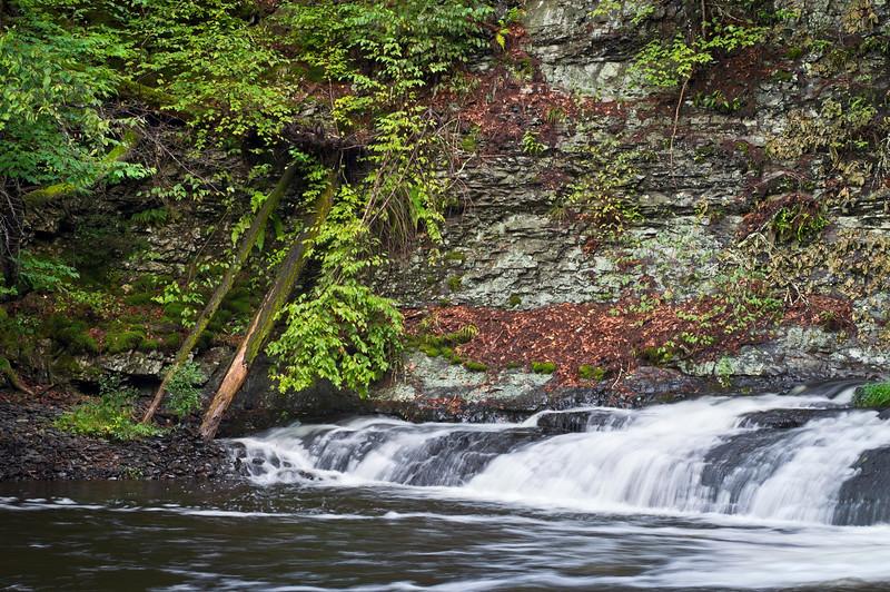 """Summer Stream""<br /> <br /> A flowing stream near Ramondskill Falls in the Pocono Mountains of Pennsylvania."