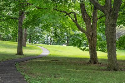 Summer Path Thru the Park
