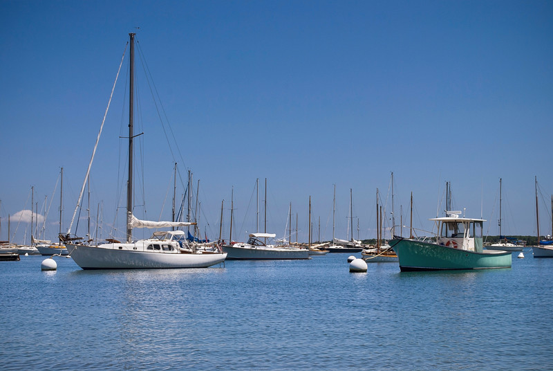 """Boats in Marina""<br /> <br /> Sailboats on a sunny Summer day off Martha's Vineyard on Cape Cod in Massachusetts."