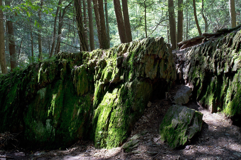 """Rock Formation in Woods""<br /> <br /> Large rock formations covered in green moss in Stokes State Forest in North West New Jersey."