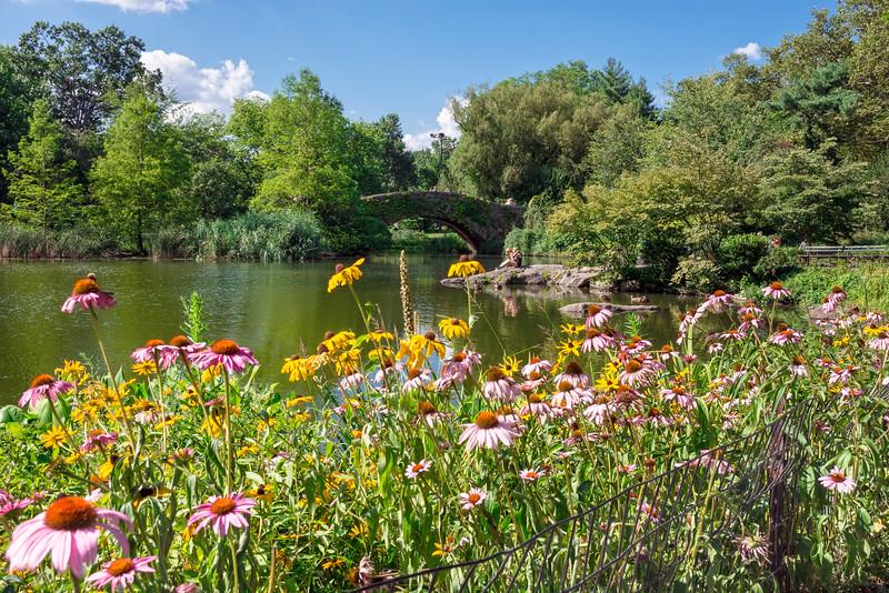 Central Park Garden View