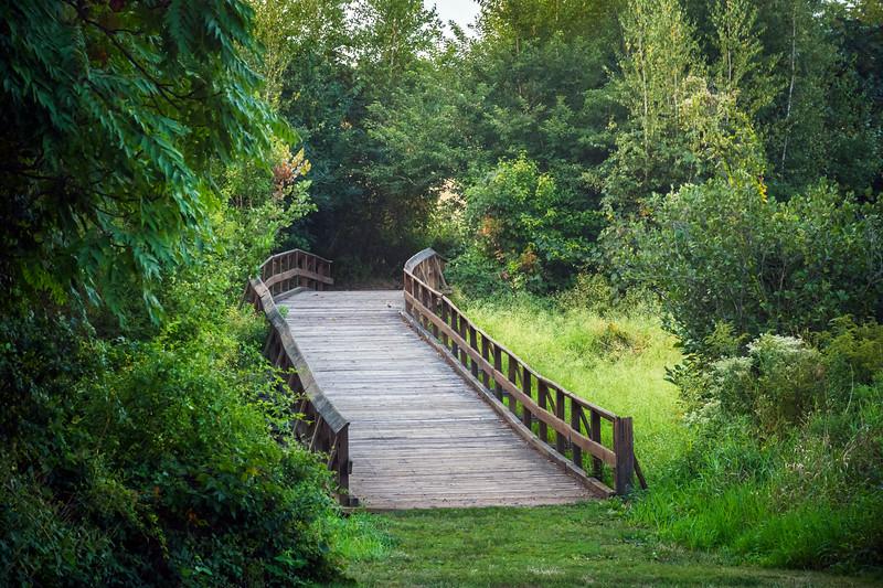 Wooden Bridge Over Meadow