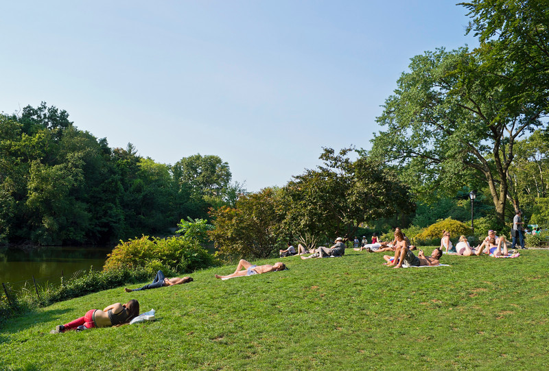 """Relaxing Central Park""<br /> <br /> People enjoying a nice Summer day relaxing and getting sun in Central Park."