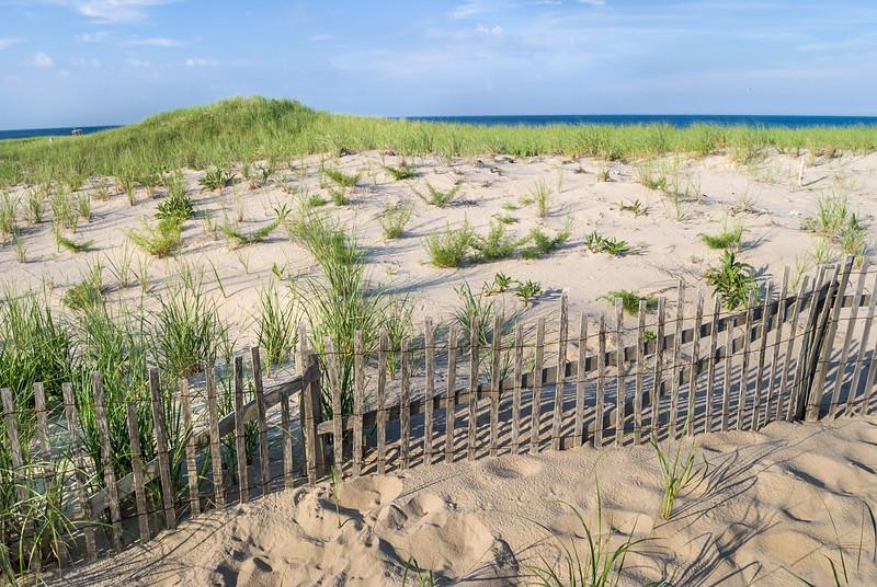 Sand Dunes Nobska Beach