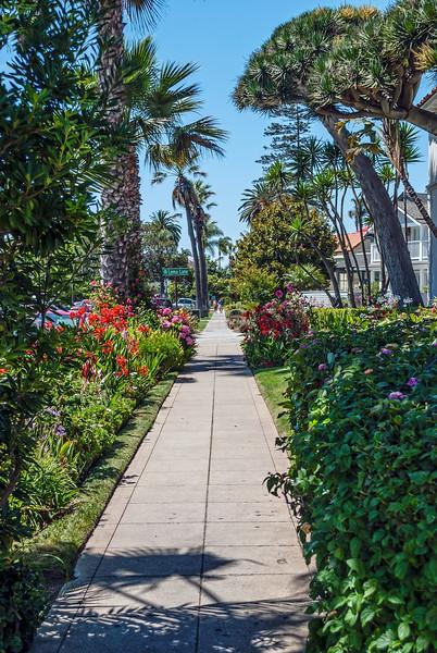 San Diego Sidewalk