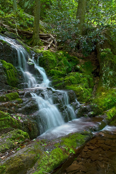 """Buttermilk Falls""<br /> An early Summer view of Buttermilk Falls in Stokes State Forest in Sussex County, New Jersey."