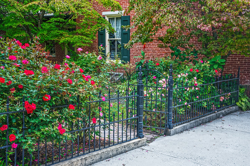 Rose Garden and Iron Gate