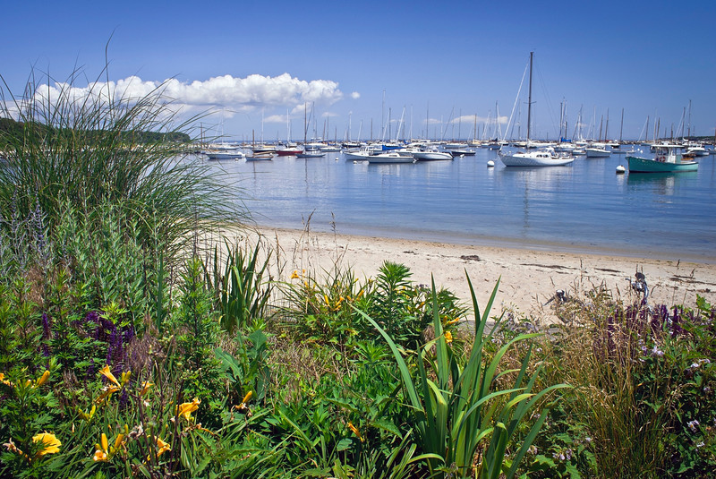 """Seaport View Martha's Vineyard""<br /> <br /> A garden view of a marina on Martha's Vineyard on a nice Summer day."