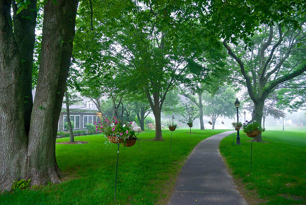 """Misty Summer Afternoon"" An unusual Summer afternoon mist upon this park in Chatam, on Cape Cod in Massachusetts."