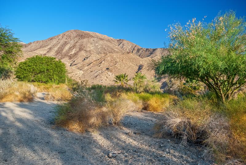 Palm Springs Land