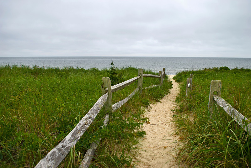 """Sea Trail""<br /> A beach meadow along the coastline in Cape Cod, Massachusetts."
