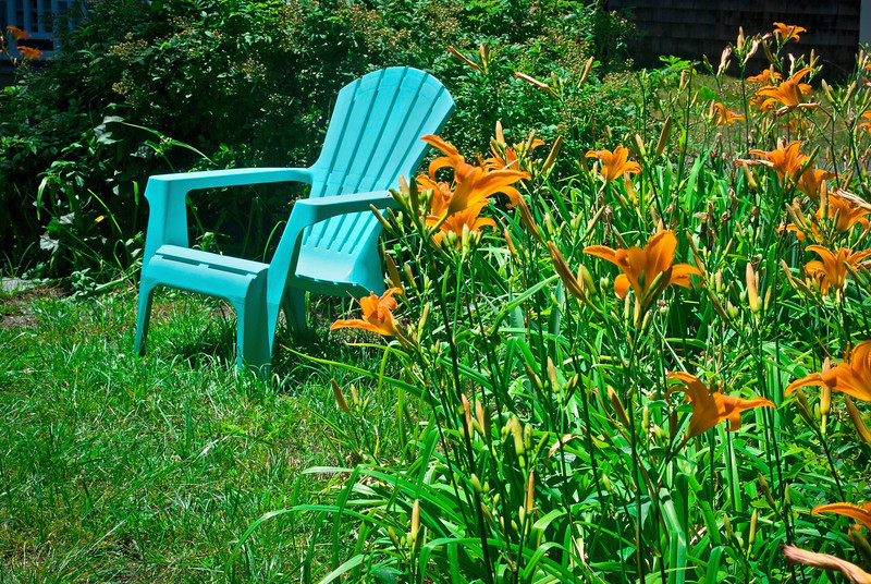 """Chair and Tiger Lilies"" <br /> <br /> A Summer garden with tiger lilies and a blue chair on the lawn in this backyard."
