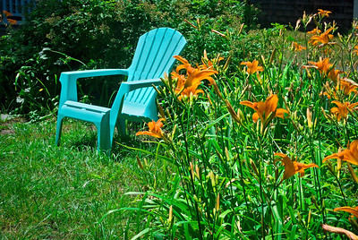 """""""Chair and Tiger Lilies""""   A Summer garden with tiger lilies and a blue chair on the lawn in this backyard."""