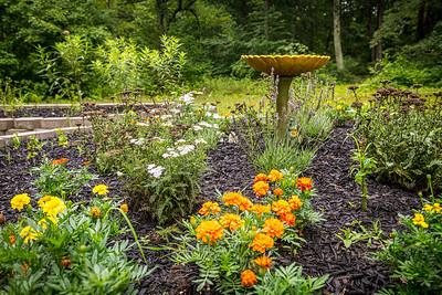 Birdbath in Garden