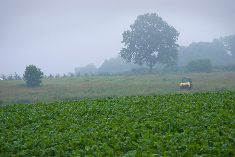 """Early Morning Farm""<br /> <br />  A foggy view of a farm in rural Central New Jersey."