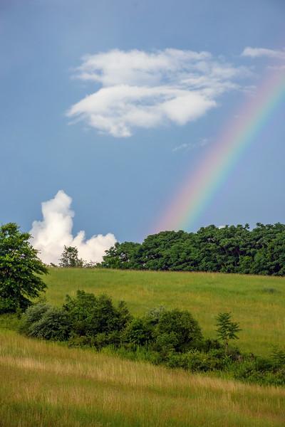 Rainbow Over Hillside