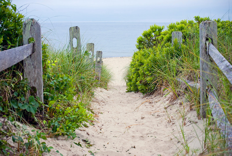 """Cape Cod Pathway""<br />   A path to a secluded Beach near Centerville on Cape Cod in Massachusetts."