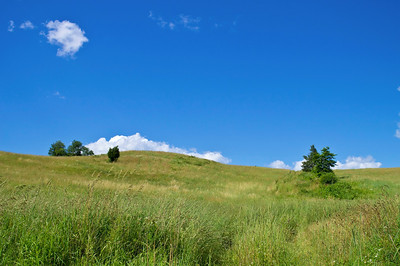 """Summer Hillside"" 2012 A grassy hillside on a nice Summer day in northern New Jersey."