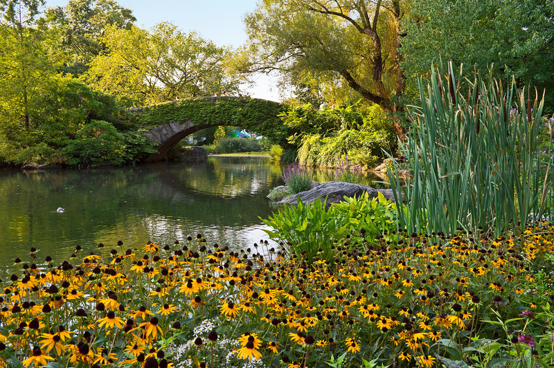 """Stone Bridge and Flowers""<br /> <br /> A Summer view of the duck pond and stone bridge in Central Park in New York City."