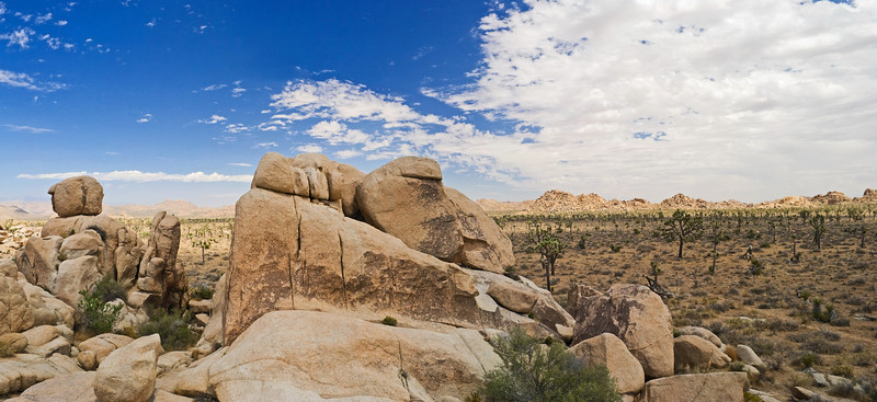 """Stone Desert Panorama""<br /> A panoramic view in Joshua Tree National Park near Palm Springs, California."