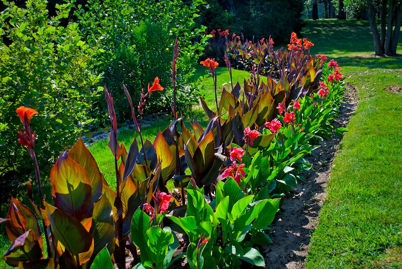 """Park Garden""<br /> A beautiful ornamental Summer garden in Spring lake New Jersey."