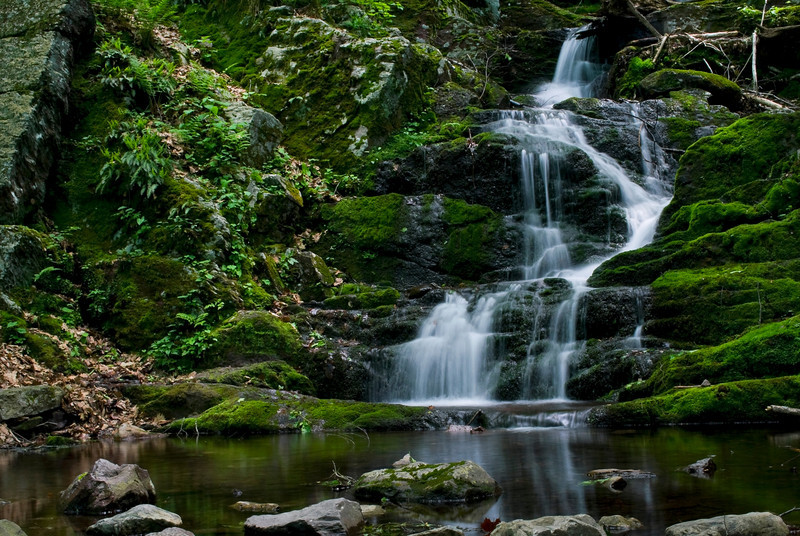 """Lush Flowing Falls""<br /> An early summer look at Buttermilk falls in Stokes State Forest, North West New Jersey."