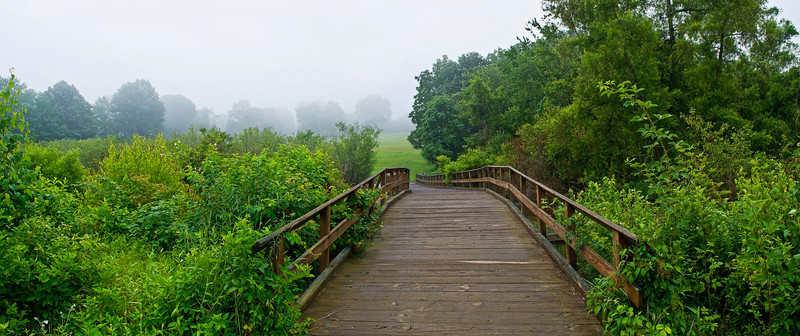 """Footbridge Panorama"""