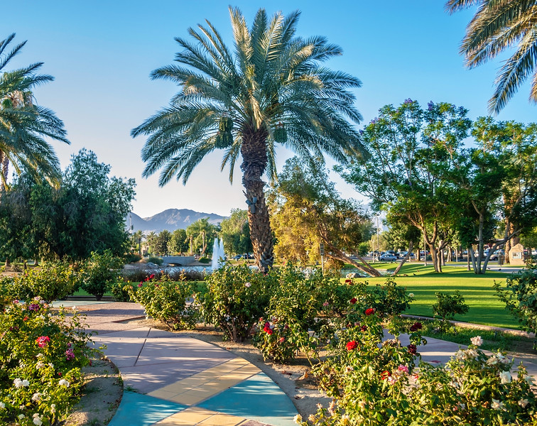 Community Park Palm Springs