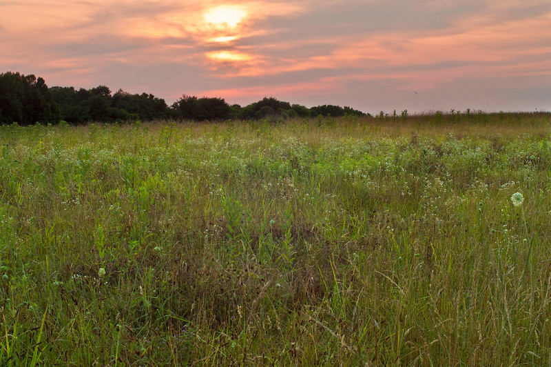 """Meadow View Sunset""<br /> A country meadow at sunset in Mommouth County, New Jersey."