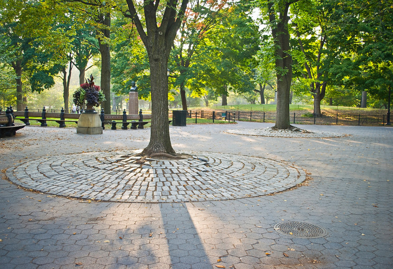 """Cobblestones Central Park""<br /> A view of the cobblestone and landscape of Central Park in Manhattan."
