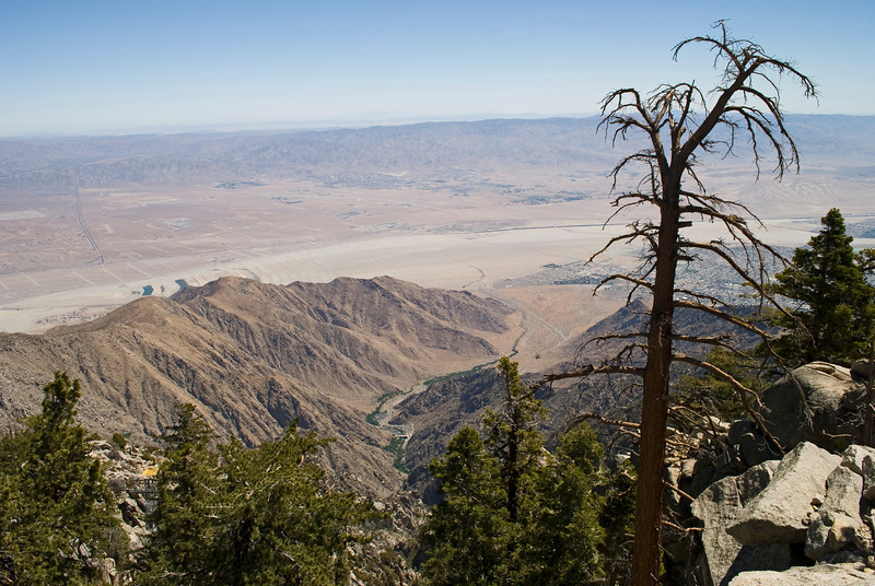 """San Jacinto""<br /> A view from the mountaintop in San Jacinto State Park in Palm Springs, California."