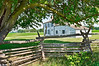 """Homestead View""<br /> A view of a historic farmhouse from under a shade tree in Monmouth Battlefield State Park."