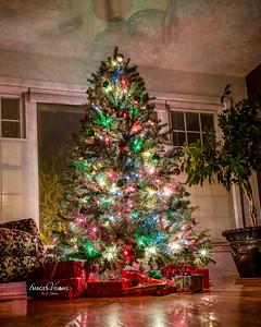 TREE2017