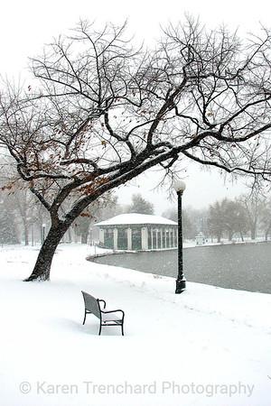 Washington Park, CO  Winter Scene