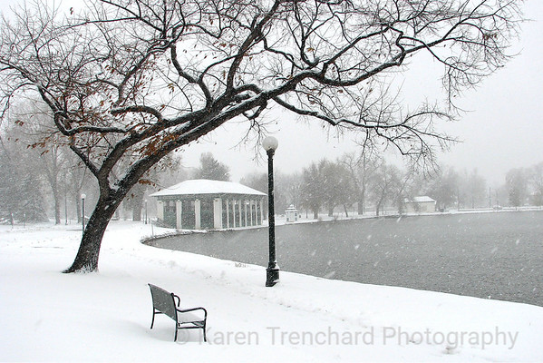 Washington Park Winter Scene
