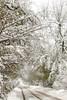 Snowy Road in Englewood, Colorado