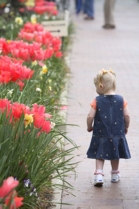 Emma admiring the blooms.