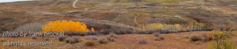 Fall Panorama on Nosehill, Calgary, Alberta