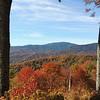 Fall Beautiful Fall
